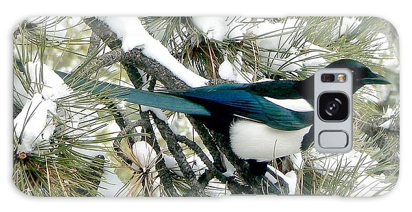 Magpie In The Snow Galaxy Case