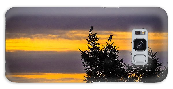Magpies At Sunrise Galaxy Case