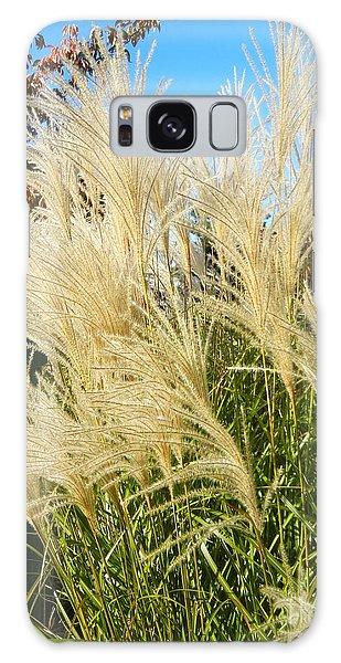Maiden Grass Galaxy Case by KD Johnson