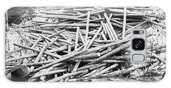 Aroostook County Galaxy Case - Maine Lumber, C1903 by Granger