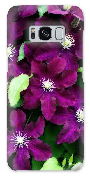 Majestic Amethyst Colored Clematis Galaxy Case by Kay Novy