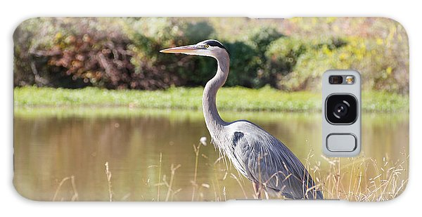 Majestic Great Blue Heron In Autumn Galaxy Case