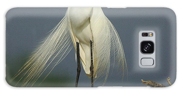 Majestic Great Egret Galaxy Case by Bob Christopher