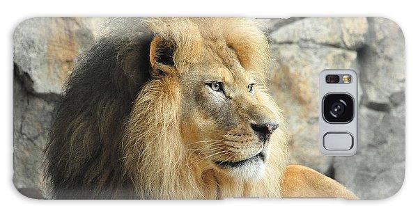 Majestic Lion Galaxy Case