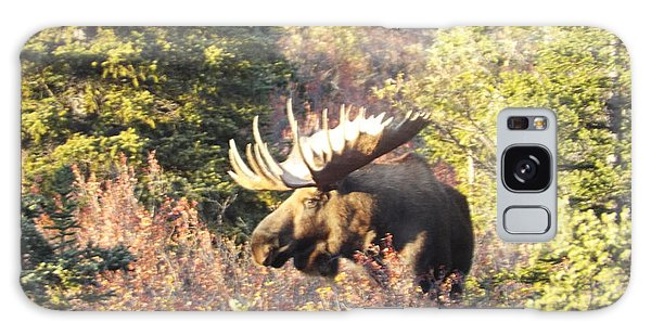 Majestic Moose Galaxy Case
