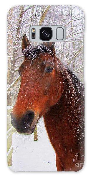 Majestic Morgan Horse Galaxy Case