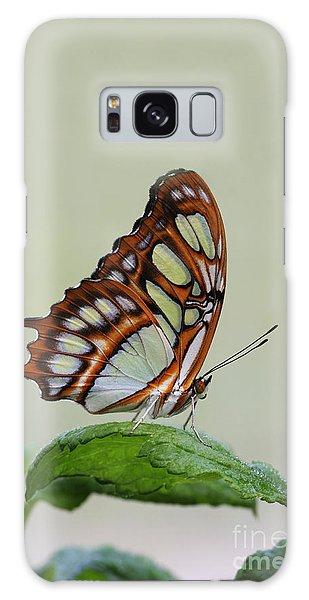Malachite Butterfly #5 Galaxy Case