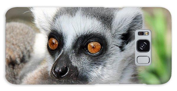 Malagasy Lemur Galaxy Case by Sergey Lukashin