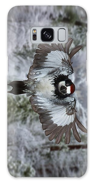 Male Acorn Woodpecker - Phone Case Design Galaxy Case