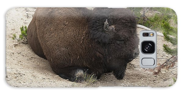 Male Buffalo At Hot Springs Galaxy Case by Belinda Greb