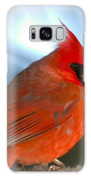 Male Cardinal  Galaxy Case by Kerri Farley
