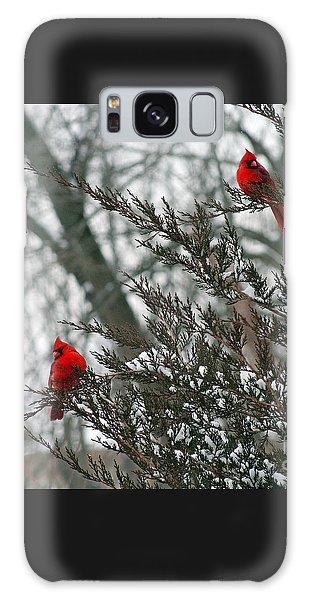 Male Cardinal Pair Galaxy Case