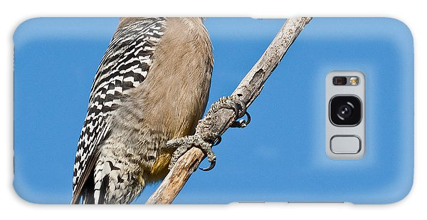 Male Gila Woodpecker Galaxy Case