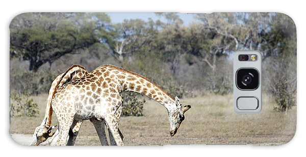 Male Giraffes Necking Galaxy Case