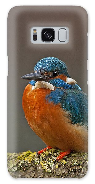 Male Kingfisher Galaxy Case