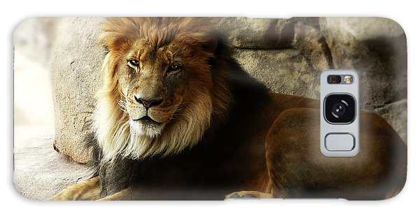 Male Lion At Rest Galaxy Case