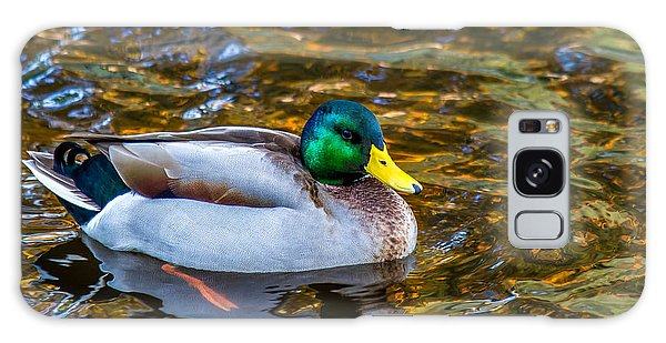Male Mallard Duck In Pond Galaxy Case