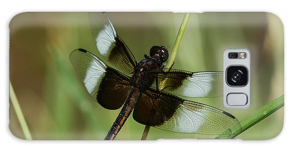 Male Widow Skimmer Dragonfly Galaxy Case