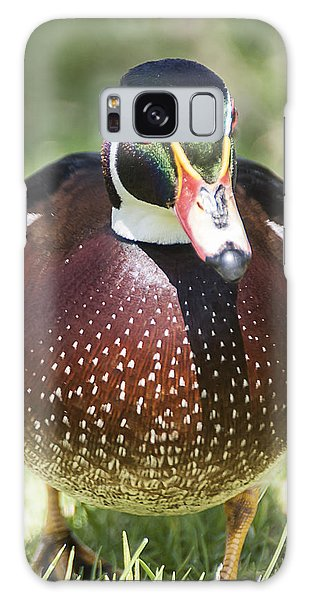 Male Wood Duck 2 Galaxy Case