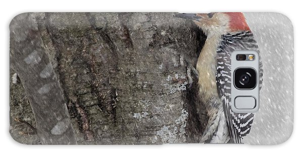 Male Woodpecker Feeding  Galaxy Case