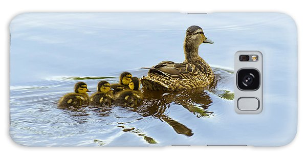 Mallard And Chicks  Galaxy Case