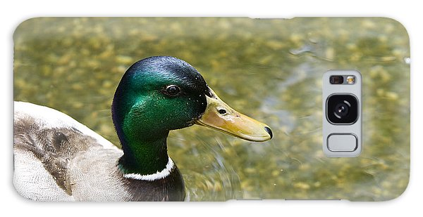 Mallard Duck Closeup Galaxy Case by David Millenheft