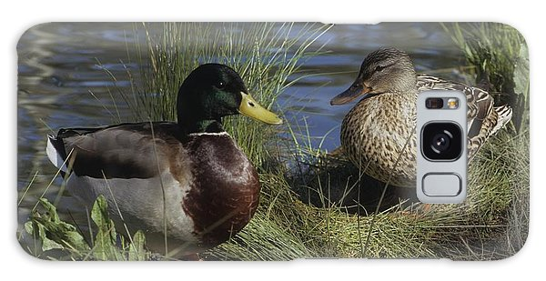 Mallard Duck Pair Galaxy Case