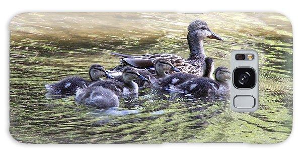 Mallard Family On Green Water Galaxy Case