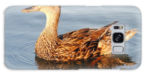 Mallard Hen Profile Galaxy Case by Dan Williams