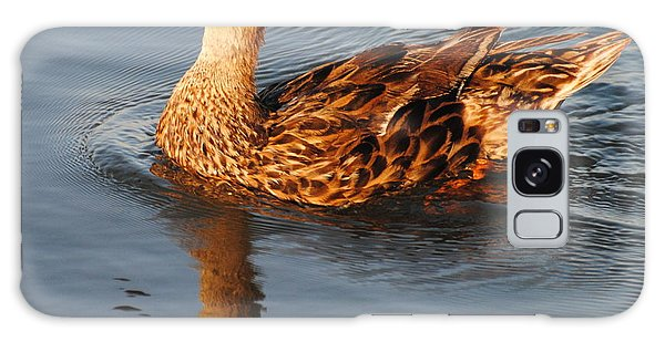 Mallard Hen Swimming Galaxy Case by Dan Williams