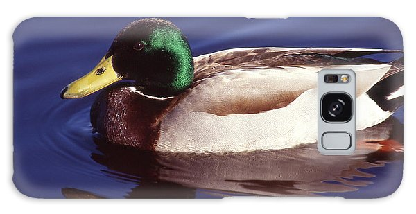 Mallard In The Mirror Galaxy Case