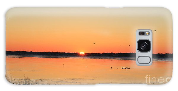 Mallards At Sunrise Galaxy Case