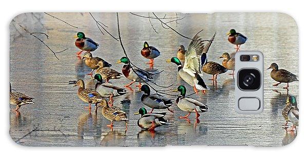 Mallards On A Frozen River Galaxy Case by Rodney Campbell