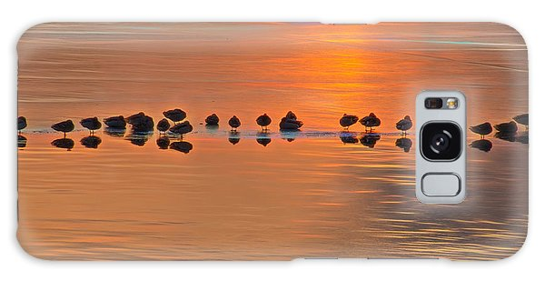 Mallards On Ice Edge During Sunset Galaxy Case
