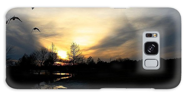 Mallards Silhouette At Sunset Galaxy Case