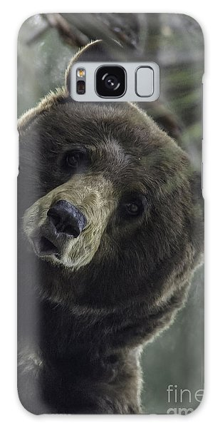 Mama Bear Galaxy Case