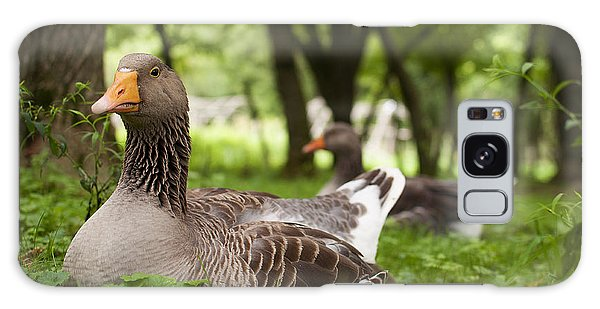 Goose Galaxy Case - Mama Goose by Elizabeth Gray