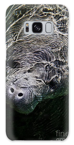 Manatee 01 Galaxy Case