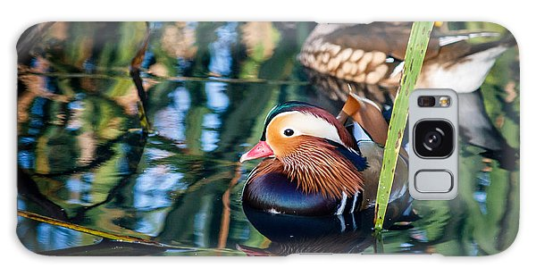 Mandarin Duck Reflections Galaxy Case