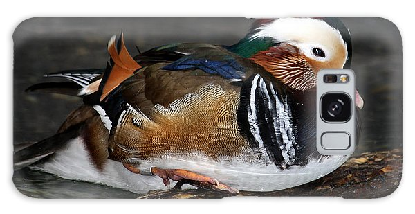 Mandarin Duck Galaxy Case by Suzanne Stout