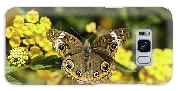 Galaxy Case featuring the photograph Mangrove Buckeye Butterfly by Donald Brown