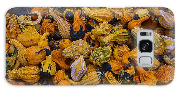 Gourd Galaxy Case - Many Colorful Gourds by Garry Gay