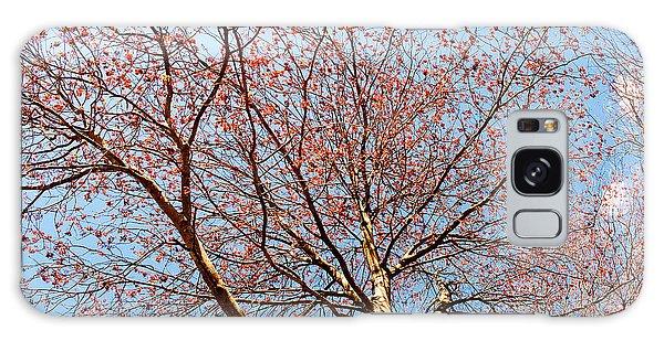 Maple In Bloom Galaxy Case