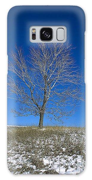 Maple In Winter Galaxy Case