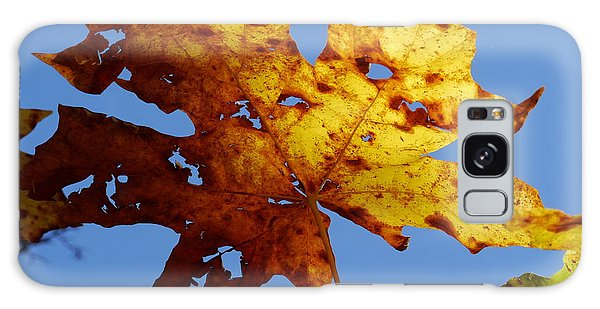 Maple Leaf On A Blue Sky Galaxy Case by Peter Mooyman