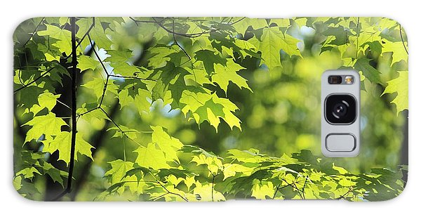 Maple Leaves In Spring Galaxy Case by Dennis Lundell