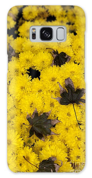 Maple Leaves On Chrysanthemum Galaxy Case