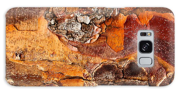 Maple Tree Bark Galaxy Case