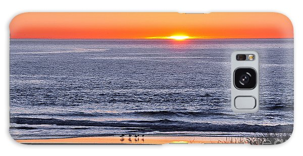 Marbled Godwits Reflecting A Sunset Galaxy Case