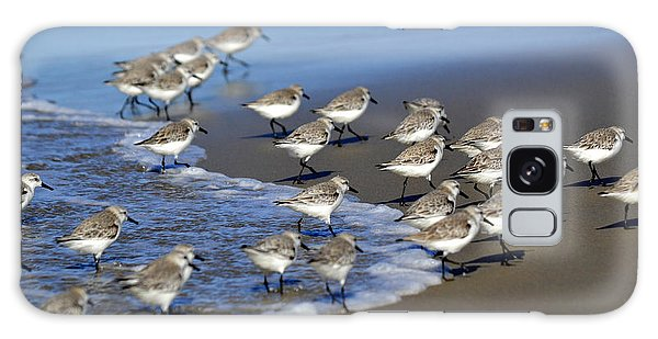 March Of The Sandpipers Galaxy Case